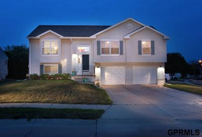 Omaha NE Single Family Home New: $195,000