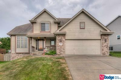 Papillion Single Family Home For Sale: 2207 Kara Drive