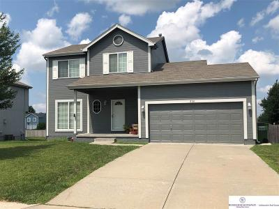 Papillion NE Single Family Home New: $225,000