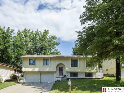 Omaha Single Family Home New: 14024 Madison Circle