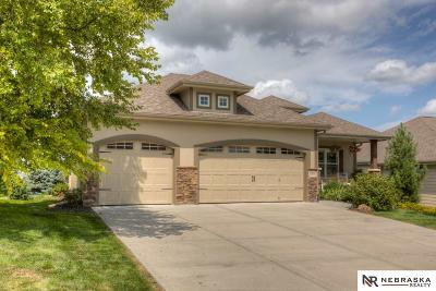 Omaha NE Single Family Home New: $389,900