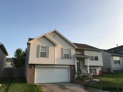 Omaha NE Single Family Home New: $187,900