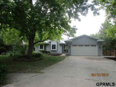 Omaha NE Single Family Home New: $230,000