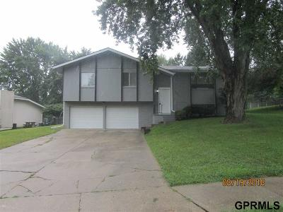 Omaha NE Single Family Home New: $200,000