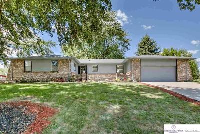 Omaha NE Single Family Home New: $200,000