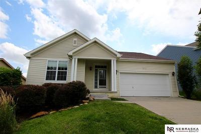 Omaha NE Single Family Home New: $247,000