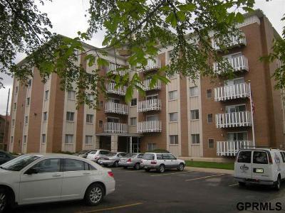 Omaha NE Condo/Townhouse New: $149,900