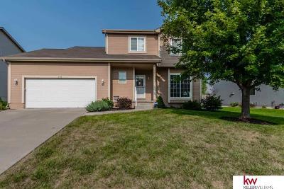 Omaha NE Single Family Home New: $234,900