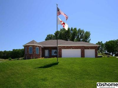 Cass County Single Family Home For Sale: 1237 Fairway Circle