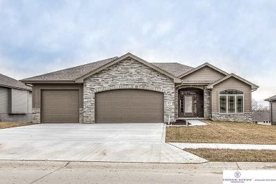 Elkhorn Single Family Home For Sale: 2517 N 188 Street