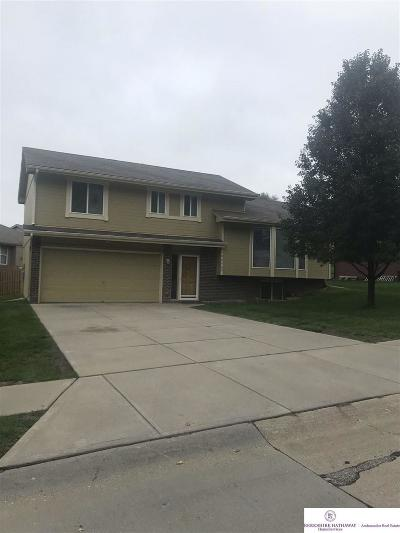 Elkhorn Single Family Home For Sale: 19006 Costanzo Circle