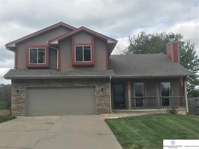 Papillion Single Family Home For Sale: 402 Fort Street