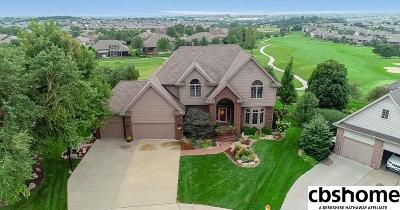 Omaha Single Family Home For Sale: 16313 Himebaugh Circle
