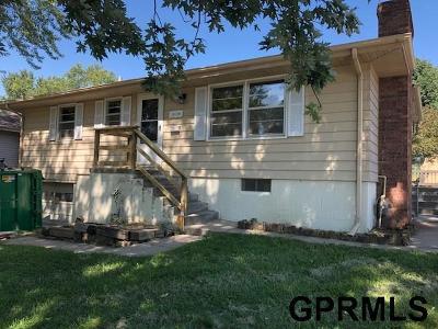 Omaha Single Family Home For Sale: 12148 Sandra Lane