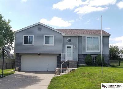Papillion Single Family Home For Sale: 118 Citadel Drive