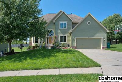 Papillion Single Family Home For Sale: 1210 Engberg Road