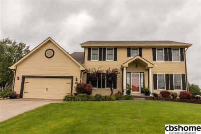 Omaha Single Family Home For Sale: 1307 S 175th Avenue