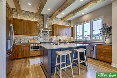 Omaha Single Family Home For Sale: 2110 S 210th Street