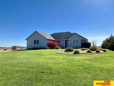 Fremont Single Family Home For Sale: 3259 W County Road S