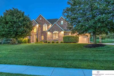 Omaha Single Family Home For Sale: 10513 S 168th Avenue