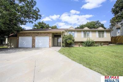 Omaha Single Family Home For Sale: 11516 Arbor Street