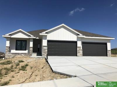 Papillion Single Family Home New: 10508 Cove Hollow Drive