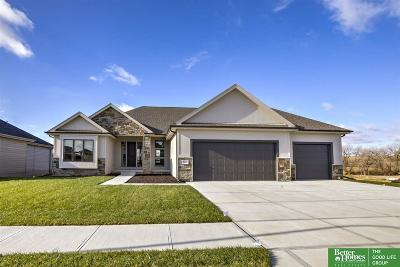 Omaha Single Family Home New: 3218 N 178th Street