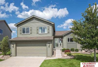 Omaha Single Family Home New: 8439 Baker Street