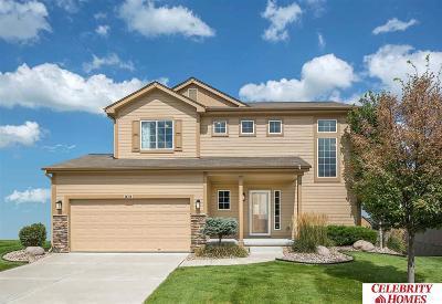 Omaha Single Family Home New: 8549 King Street