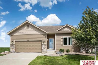 Omaha Single Family Home New: 8553 King Street