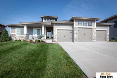 Elkhorn Single Family Home New: 1718 S 207 Street