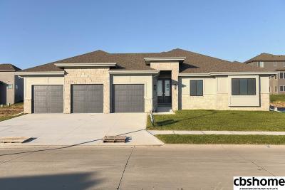 Elkhorn Single Family Home For Sale: 2104 S 211th Street