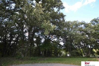Plattsmouth Residential Lots & Land For Sale: Lot 431c