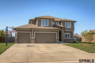 Omaha NE Single Family Home New: $385,000