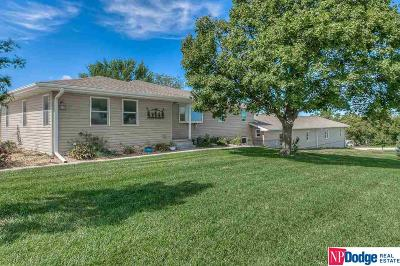 Single Family Home For Sale: 16902 S 180 Street