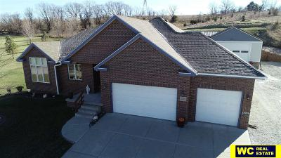 Single Family Home For Sale: 11599 Todd Drive