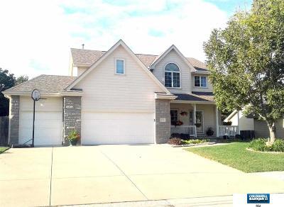 Omaha Single Family Home For Sale: 17232 South Creek Circle