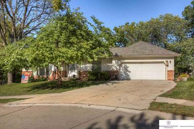 Bellevue Single Family Home For Sale: 11601 Susie Circle