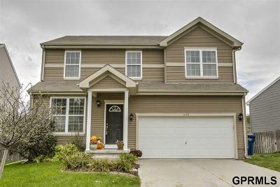 Elkhorn Single Family Home For Sale: 1601 N 208 Street