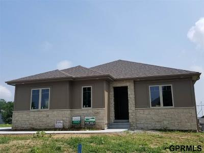 Single Family Home For Sale: 14445 Read Street