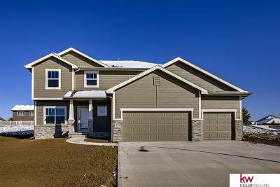 Bennington Single Family Home For Sale: 17143 Potter Street