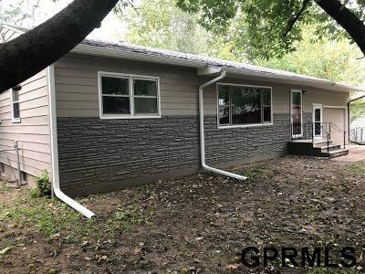 Bellevue Single Family Home For Sale: 204 Chevro Lane