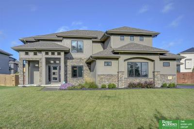 Omaha Single Family Home For Sale: 1602 Blue Sage Parkway