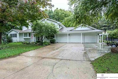 Omaha Single Family Home For Sale: 7684 Shirley Street