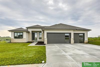 Omaha Single Family Home For Sale: 18465 Birch Avenue