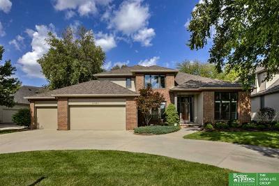 Omaha Single Family Home New: 16330 Valley Street