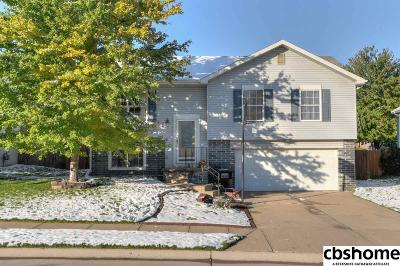 Single Family Home For Sale: 7008 S 176th Street