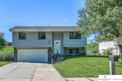 Single Family Home For Sale: 6628 S 151 Street