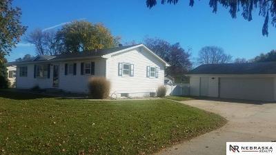 Omaha Single Family Home New: 11029 Harney Street