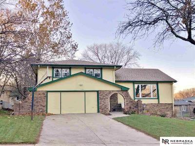 Omaha NE Single Family Home New: $260,000